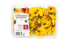 Tray Cornabria Blossom_0076a