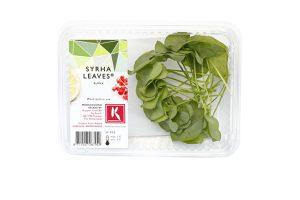 Tray Syrha Leaves_0081a