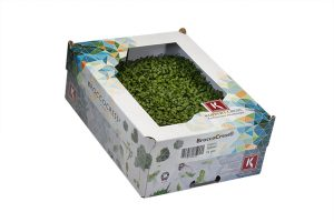 BroccoCress_0166a