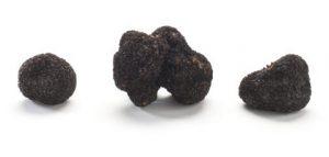 Truffel zwart op wit_481x230